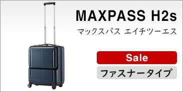 マックスパスH2s