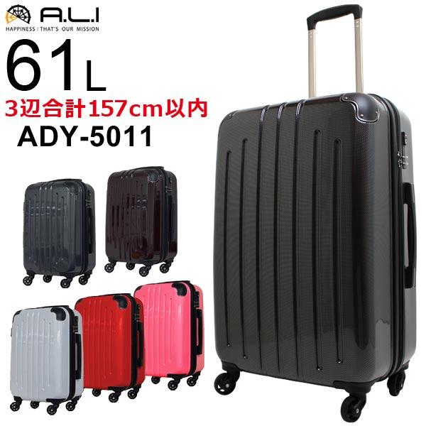 アジアラゲージADY-5011